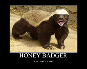 honeybadger1-1-1